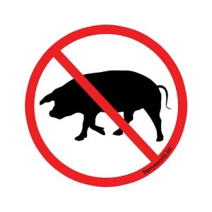 no-pigs